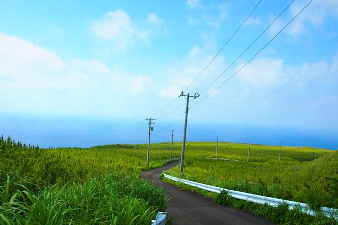 Nature on Aogashima island Source: Gurunavi
